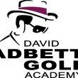 David Leadbetter Golf Logo