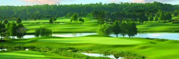 Shingle Creek Golf Club - Hole 15